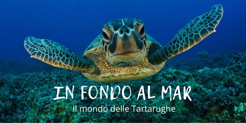 Evento In Fondo Al Mar Tartamare